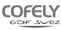 cofely-logo-bsl-securite-marseille