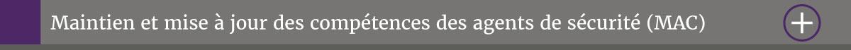 mac-mise-a-jour-des-compétence-report-groupe-bsl-securite-ile-de-france