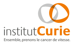 groupe-bsl-securite-igh-institut-curie